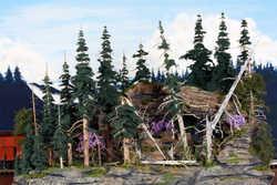 The Dead ForestGene D. AustinIMG_1202.jpg